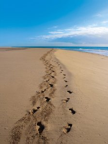 lonely_footsteps_in_the_sand_by_daila0701-d3ncbfd